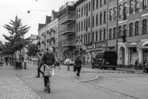 Ingemar Ljungdahl elspark-3