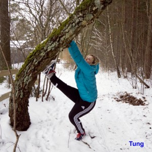 Ingemar Mårtensson-Tung-5-Tung