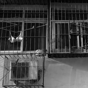 RdeM-balkong-07